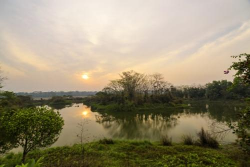 12 Migratory Migratory Bird Pond 0SB4789-1